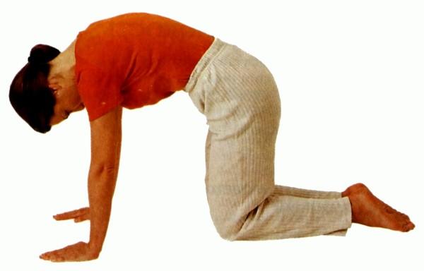 Упражнения на гибкость позвоночника в картинках 7