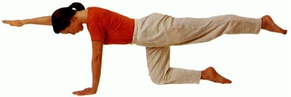 Упражнения на гибкость позвоночника в картинках 6