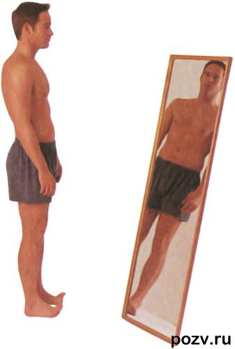 Упражнения для осанки способствуют развитию