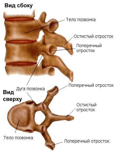 препарат при заболеваниях суставов